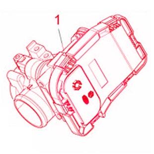 Εικόνα προϊόντος για 'Πλαίσιο γκαζιού PIAGGIOTitle'