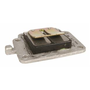 Product Image for 'Reed Valve Block RMSTitle'