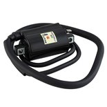 Product image for 'Ignition Coil SGR Aprilia, Bmw, Cagiva, YamahaTitle'