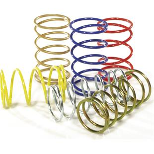 Product Image for 'Contrast Spring MALOSSI RacingTitle'