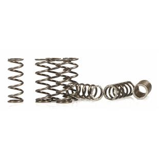 "Product Image for 'Clutch Springs SIP RACE ""COSA 2"" for ""COSA 2"" clutchTitle'"