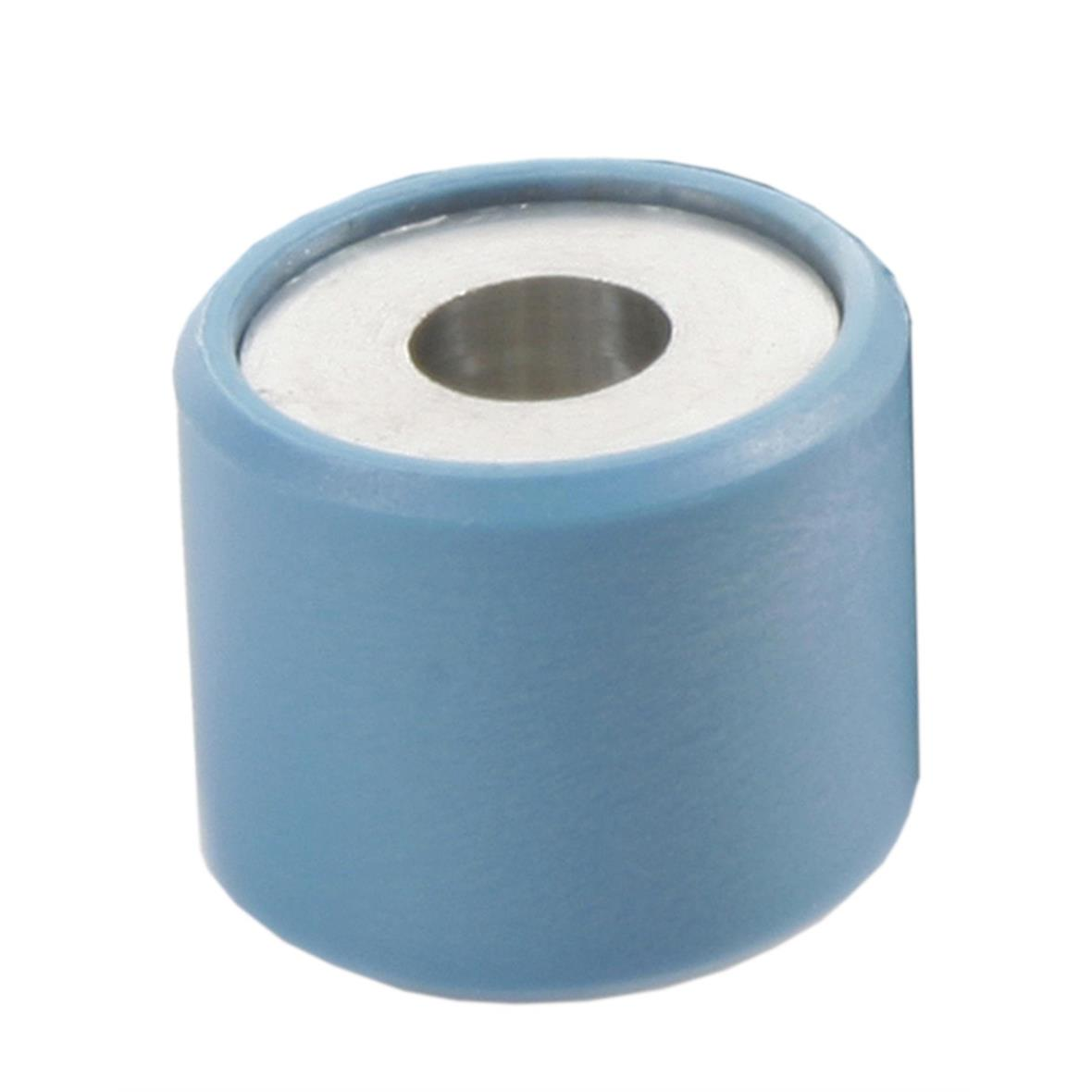 Product image for 'Variator Roll PIAGGIO 21x17 mm 12,0gTitle'